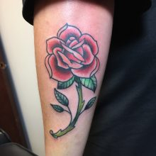 Teemu red rose