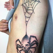 Teemu spider and web